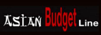 asian budget line vuurwerk logo